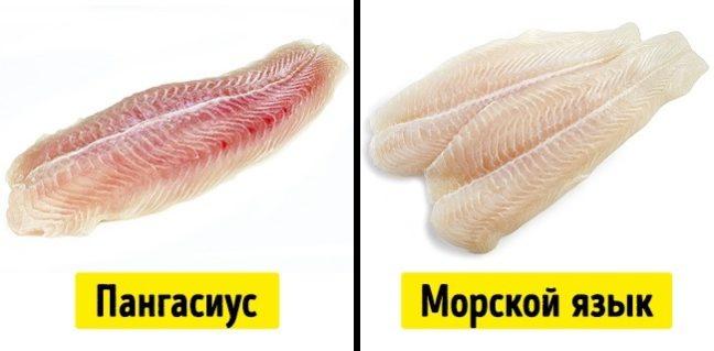 Как приготовить морской язык в кляре - 6 вкусных вариантов