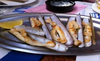 Моллюск морской черенок