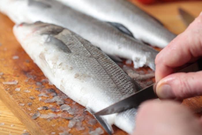 удаление чешуи с рыбы сибас