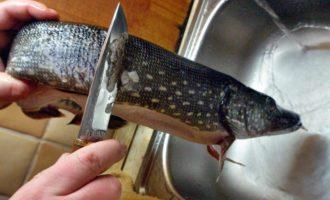 чистка щуки ножом