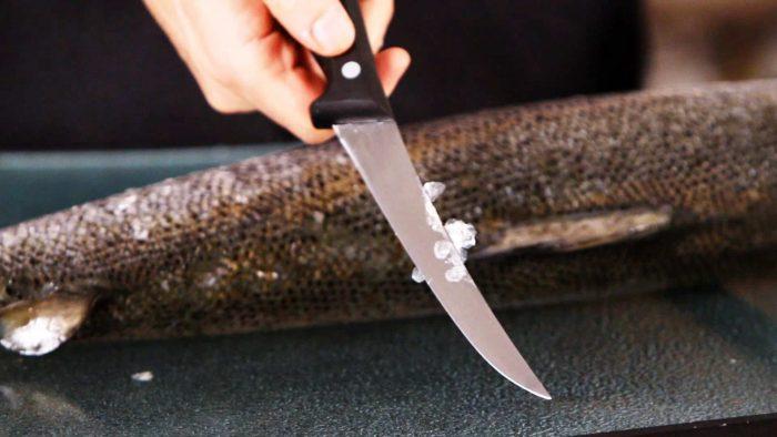 снимать чешую можно ножем
