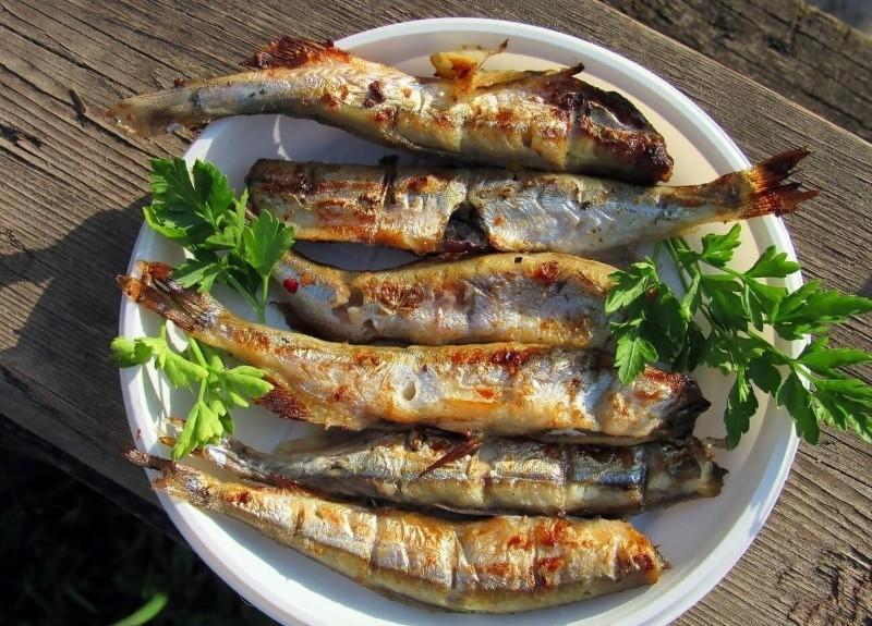 5 способов приготовить дешевую рыбу, чтобы на вкус была не хуже дорогой