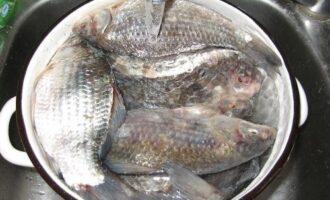 заготовленная рыба