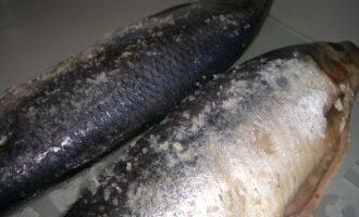 замороженные тушки рыбы