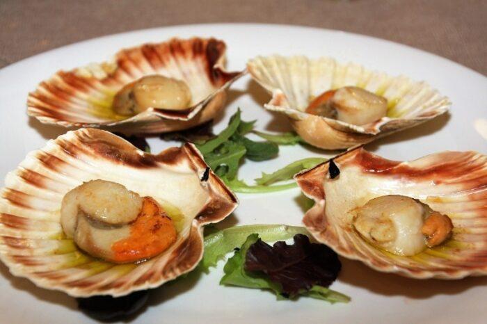 морской гребешок на блюде