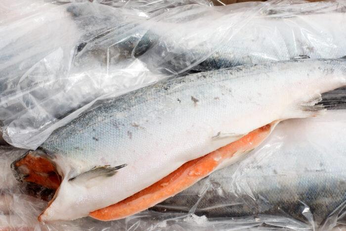 свежемороженная тушка рыбы кижуч