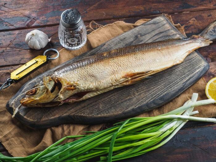 особенности строения рыбы муксун