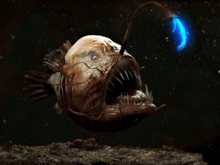 рыба глубоководный удильщик с фонарем