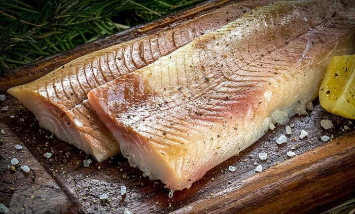 заготовки из рыбы северных морей