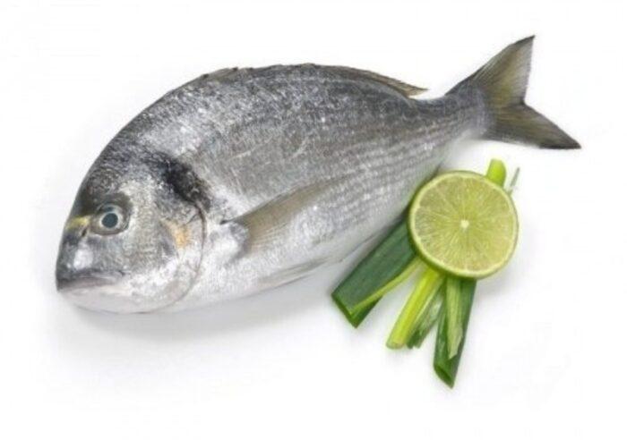 рыба стала источником появления фамилий