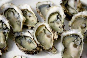 польза устриц и других морепродуктов
