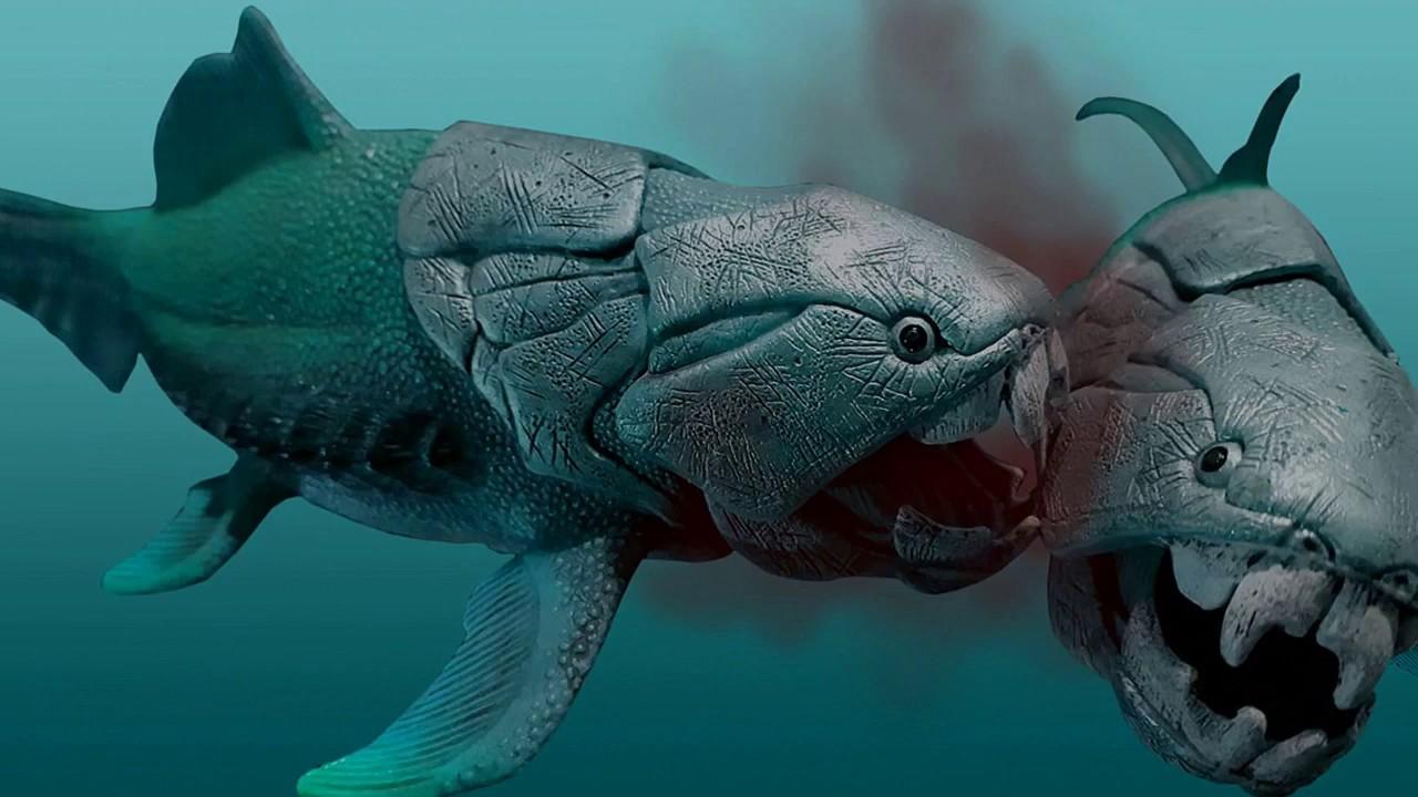 как выглядит бронированная рыба