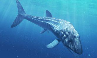 лидсихтис - рыба с длинной в 30 метров