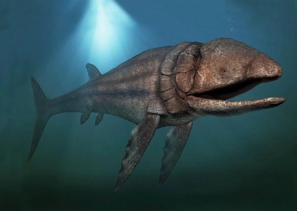 гигантская костистая рыба лидсихтис