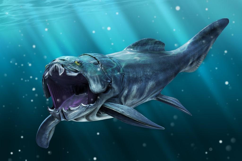 огроная бронированная рыба дунклеостей