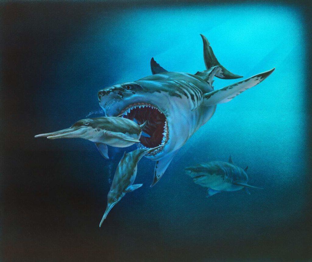 прародитель современной акулы