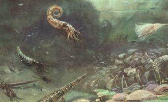 как выглядел древний океан