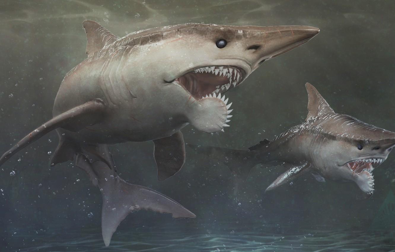 акула с циркулярной пилой во рту