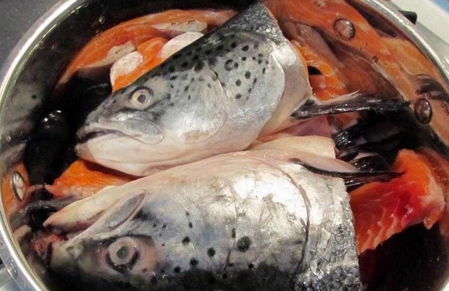 Какая отвратительная рыба: блюда из морепродуктов, которые вы вряд-ли захотите пробовать на вкус