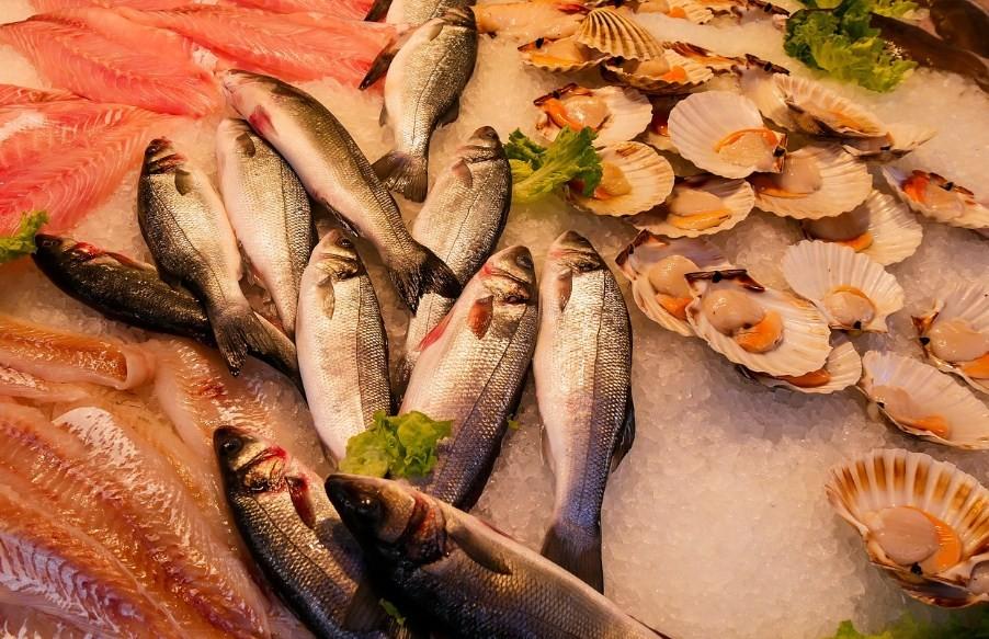 разнообразие морепродуктов на рынке