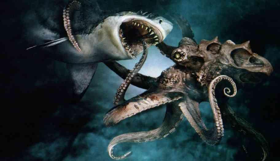 опасен ли осьминог для акулы