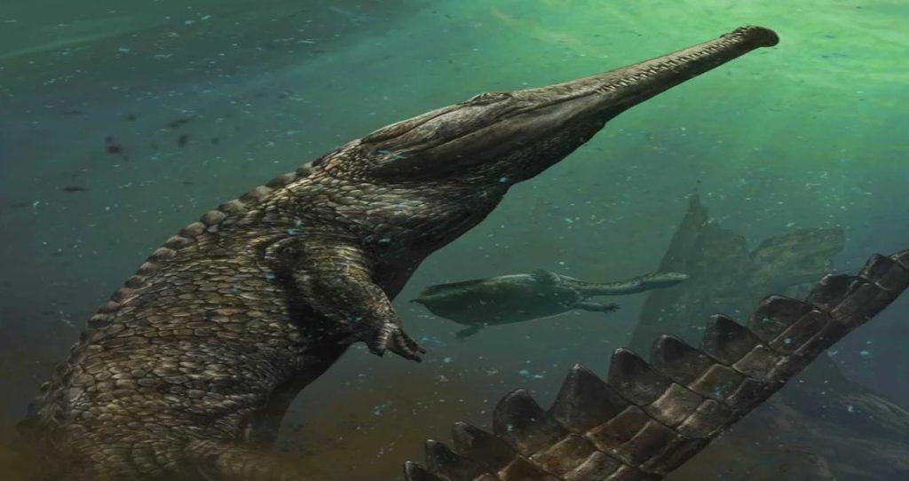 внешний вид аллигатора Рамфузухус