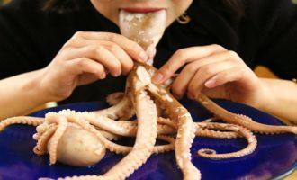 как едять осьминога