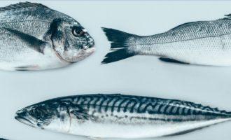 какая рыб опасна