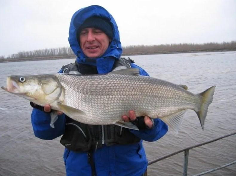 рыбак с небольшой рыбой